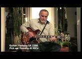 Yamaha THR 10 &  six  different Guitars