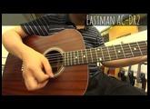【音樂魔法屋】Eastman AC-DR2 vs Martin DRS1