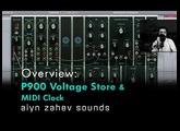 The Pulsar Modular P900 - Voltage Store