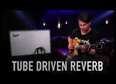 Supro 1685RT Neptune Reverb Amplifier Official Demo by David Koltai