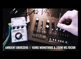 Ambient 08062016 // Korg monotribe & Zoom MS-70CDR