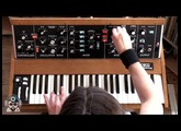 The New Minimoog Model D In Action