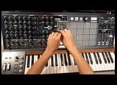 Olivier Briand Matrixbrute Audiodescription