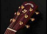 Headway Guitar - Demo HJ-SAKURA/STD