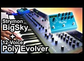 DSI POLY EVOLVER (12 Voices) + Strymon BIG SKY - Ambient Chillout Music 【SYNTH DEMO】