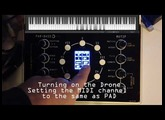 The NDLR - a PAD demo with easy to see and hear notes