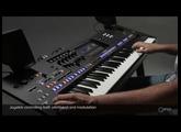 Joystick controlling pitchbend and modulation. Yamaha Genos