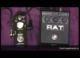 Mooer Black Secret Rat Clone Vs ProCo Rat Distortion Pedal Comparison