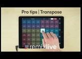 Transpose | Remixlive Pro tips