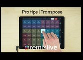 Transpose | Remixlive Pro tips