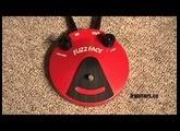 Dunlop Fuzz Face Demo