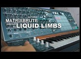 Arturia MatrixBrute patches by LIQUID LIMBS