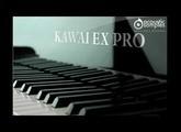Acoustic Samples KAWAI EX PRO - Wooden Hut