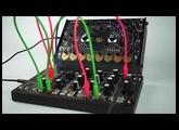 Quadrantid Swarm meets Make Noise 0 Coast