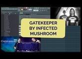 #4 Gatekeeper volume modulation by Infected Mushroom