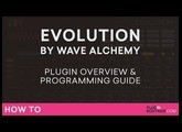 Evolution by Wave Alchemy Tutorial | Overview & Getting Started