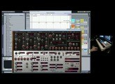 2 Quick Patches in Rob Papens - Predator - The meanest synth Alive