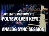 DSI POLY EVOLVER KEYBOARD // AMBIENT SYNC SOUND SESSION