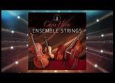 Best Service - Chris Hein Ensemble Strings - Details