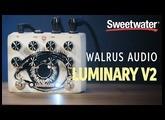 Walrus Audio Luminary V2 Quad Octave Generator Pedal