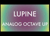 Lupine Analog Octave Up - Flower Pedals