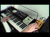 Hohner Pianet T /// WMD Geiger Counter