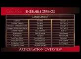"Chris Hein - Ensemble Strings ""Articulations"""