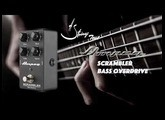 Strings Quick Test - Ampeg Scrambler Bass Overdrive pedal Demo