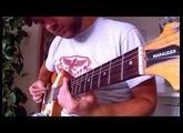 The Legend of Zelda - Twilight Princess - Faron Woods (Guitar/Bass/Acoustic/Metal Cover)