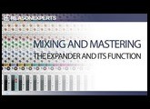 Learn how to mix in Reason part 9 | The Expander in the Mixer | ReasonExperts