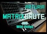 Arturia Matrixbrute // 009 - Wild things