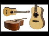 "Introducing The New Journey Instruments ""Journey Junior"" Guitars!"