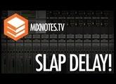 Mono Slap Delays! Universal Audio - Cooper Time Cube!