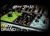 Moog Grandmother // Gram Jam No. 2