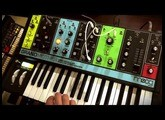 "MOOG GRANDMOTHER : Sequencing ""I feel Love"" x Donna Summer in 10 seconds"