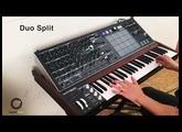 Arturia MatrixBrute #3 | Play with Paraphonic & Duo Split Mode