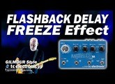Flashback Delay FREEZE Effect - TC Electronic [Gilmour Style].