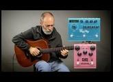 Acoustic Ambient Guitar - Taylor Baritone, Strymon Big Sky, Strymon DIG, EHX Pitch Fork