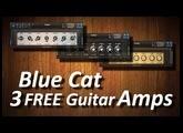 New & Free!! 3 Blue Cat Guitar Amps