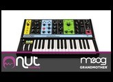 Moog GrandMother a cura di Enrico Cosimi @ Nut Academy