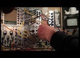 Rings & Friends (Mutable Instruments Rings, Microbrute, MicroKorg + Oscilloscope)