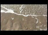 Orange Wiggler - Rings & Waves ; Mutable Instruments Rings demo