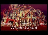 Modular Ambient : Whale Chant : Tides, Rings, Peaks, Ripples, Clouds, 4ms SMR