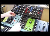 Moog Grandmother & Behringer Model D