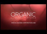 Organic Lifeform Textures - Creature and Insect Sound Effects - Sample Library