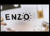 Introducing: Enzo / Meris