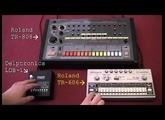 Delptronics LDB-1 + TR-606 + TR-808