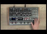 MiniBrute 2 Ecosystem Tutorials: Episode 04 - The Sequencer