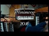 Minimoog 2018