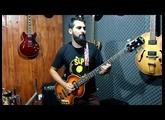 Contra Baixo    Epiphone   Viola Bass   By Saulo simon